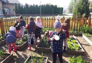Nove upute o dovođenju djeteta u Dječji vrtić Ivančice: Od 25. 05. omogućeno uključivanje sve djece u rad vrtića