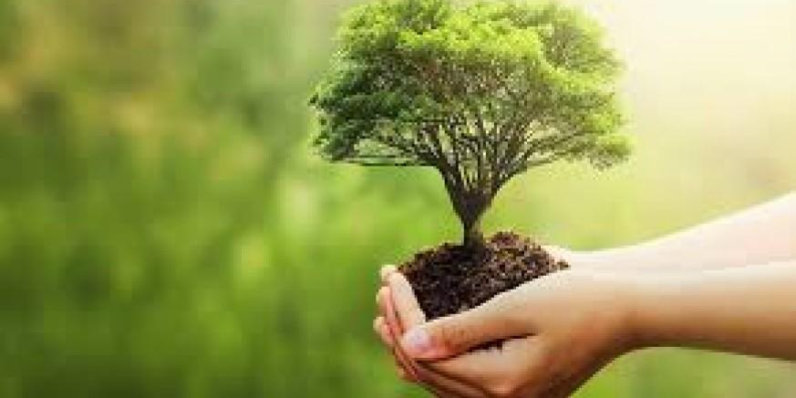 Objavljen Natječaj za tip operacije 4.4.1 Neproduktivna ulaganja povezana s očuvanjem okoliša.jpeg